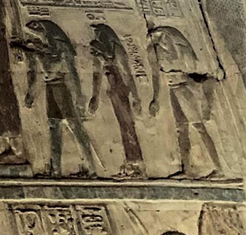 De kikker. Deel 8 van dieren als helpers in Egyptische mythologie en Europese sprookjes.